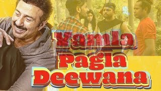 Yamla Pagla Deewana Phir Se Spoof | Bollywood Spoof | Comedy Videos | Comedy Films | Real Shit Guys