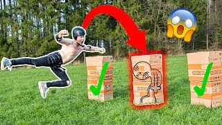 ZERSTÖRE die PERSON in der Box Challenge II RayFox