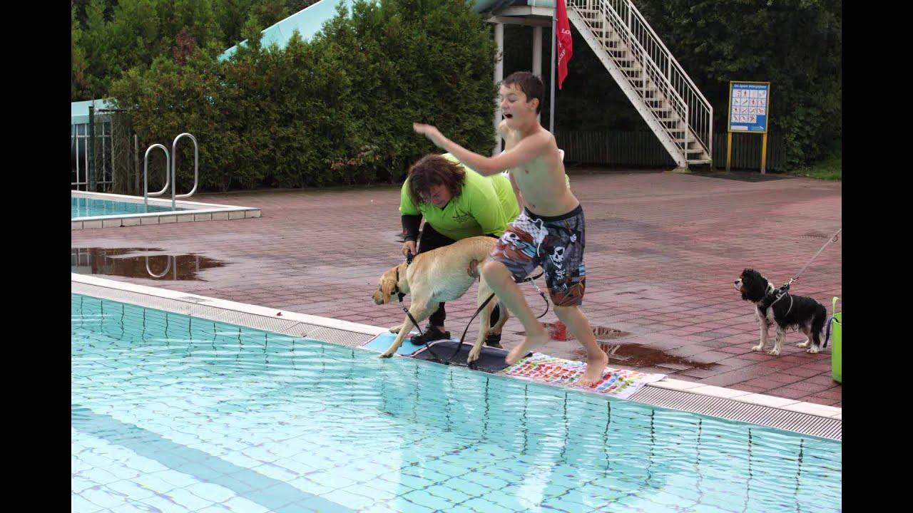 Zwembad De Stok : Zwemmen met je hond mghs bergen op zoom bij zwembad de stok