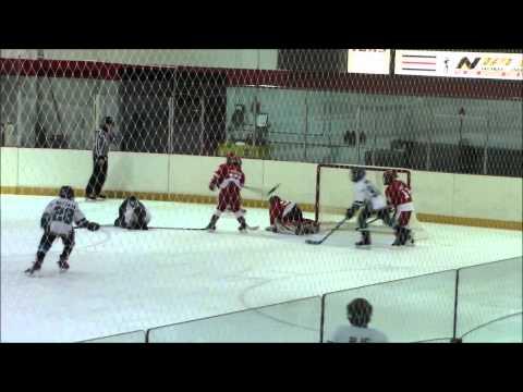 Rochester Red Wings vs Tonawanda playoff game February 21 2015