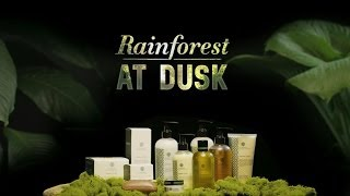 Teadora Rainforest at Dusk 100% Natural Fragrance