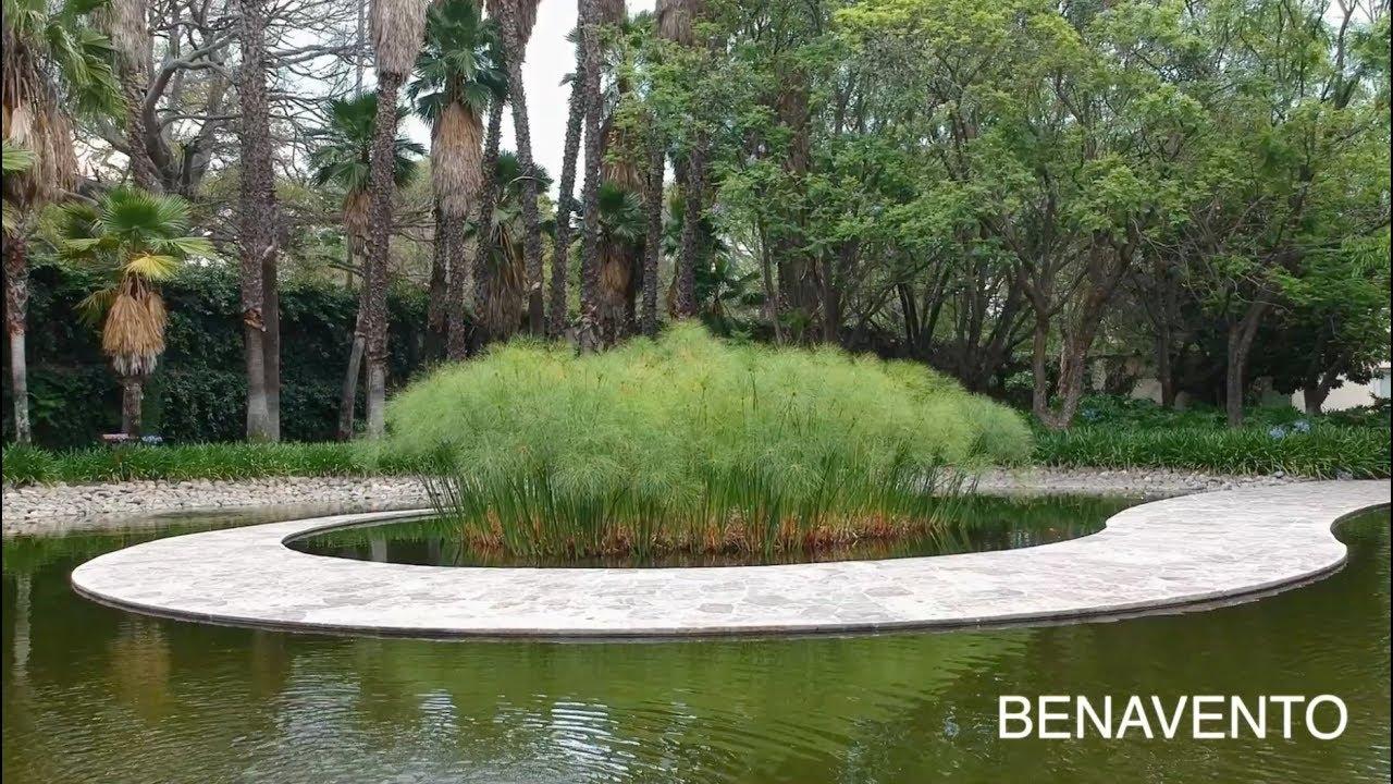 Benavento Ofrece El Jardín Y Terraza Ideal Para Bodas Y Eventos Sociales En Guadalajara