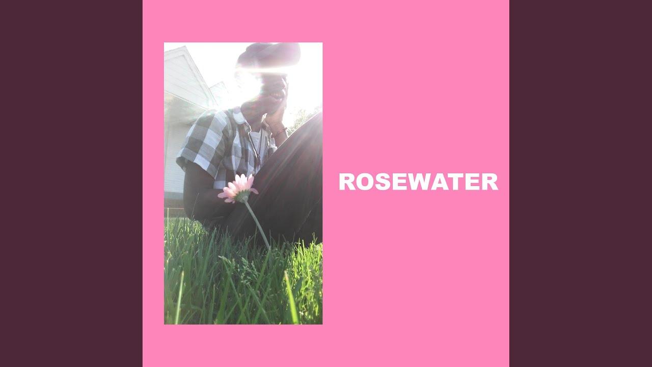 Rosewater PDF Free Download