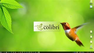 Projecto Colibri - Motor de base de dados