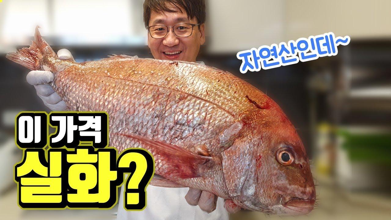 자연산 참돔을 치킨 가격에? 일반인도 저렴하게 먹는 방법 - Natural red sea-bream for chicken price?