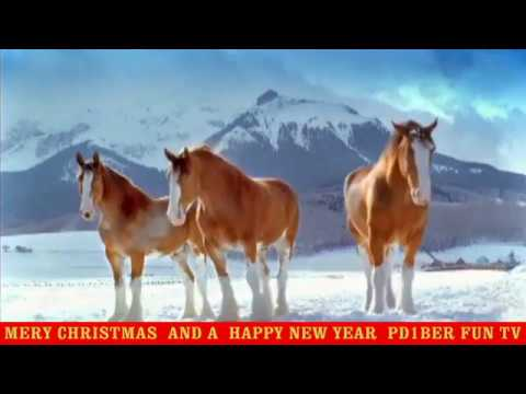 Happy New Year Horse Images 85