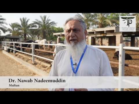 Feed Formulation for Feedlot Farmers by Training Pakistan
