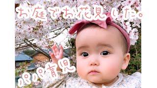 【パパ育児】赤ちゃんとお庭でお花見してみた!!【Vlog♯6】