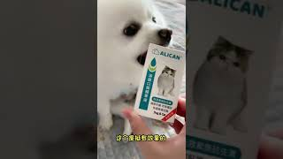Dogbaby cute funny compilation  animals & pets chines tiktoks  [#dog home]  #shorts