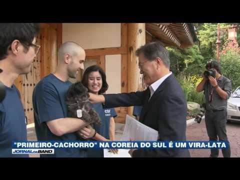 Vira-lata vira cachorro oficial do presidente sul-coreano