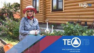 """""""Сад и огород"""" с Октябриной Ганичкиной / ТЕО-ТВ 2019 12+"""