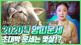 (2020년 양띠운세)▶경자년 나이별운세◀ 양띠 초대박운세는 과연 몇살!? ?? [서울유명한점집 용한점집]