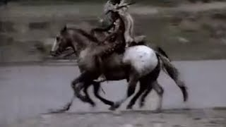 The return of the horse - Wild New World - BBC history