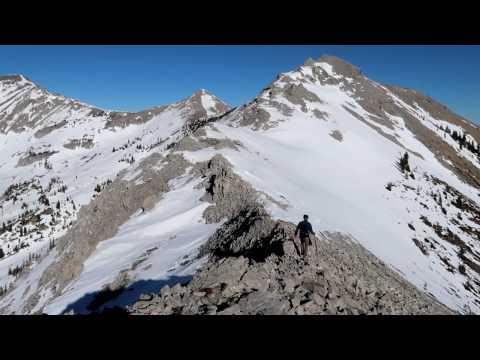 Mount Proctor / Fairy Creek Trail (Fernie, BC)   Random impressions of hike