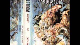 Maelstrom - Dreaming the Coldness