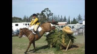 Springston Trophy 2008 - Pony Club 3 Day Event
