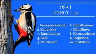 100 Suomalaista Lintua Osa 1 Linnut 1-10
