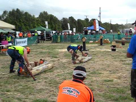 Loggersports, woodsplit dargaville