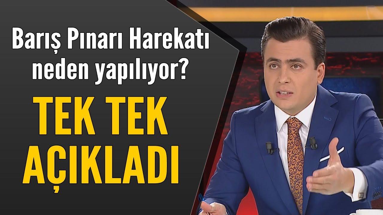 Osman Gökçek, Barış Pınarı Harekatı'nın nedenlerini madde madde açıkladı