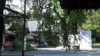 平野神社は、京都府京都市北区にある神社。式内社(名神大社)、二十二...