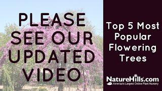 Top 5 Most Popular Flowering Trees | NatureHills.com