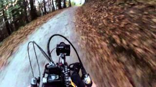 Stricker Handbike Puma - Wald