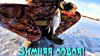 Рыбалка. Зима ловля, я в шоке!(Рыбалка.Зима ловля, я в шоке! Друзья мои, первый раз я вырвался на зимнюю рыбалку и я в шоке! Думаю, мне понрав..., 2016-12-04T11:38:11.000Z)
