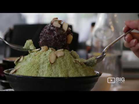 Restaurant | Fresh NZ | Asian Food | Auckland | New Zealand | Review | Content