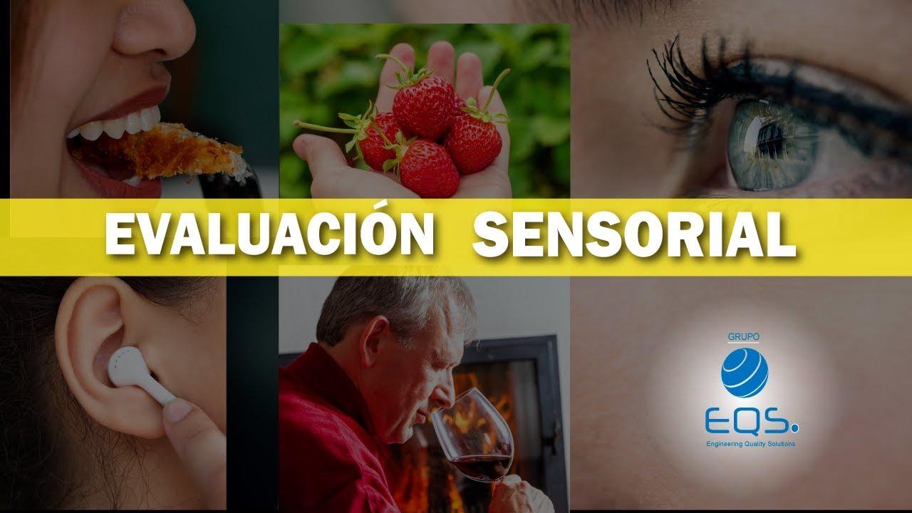 Evaluación Sensorial De Alimentos 2 5 Eqs Grupo Youtube