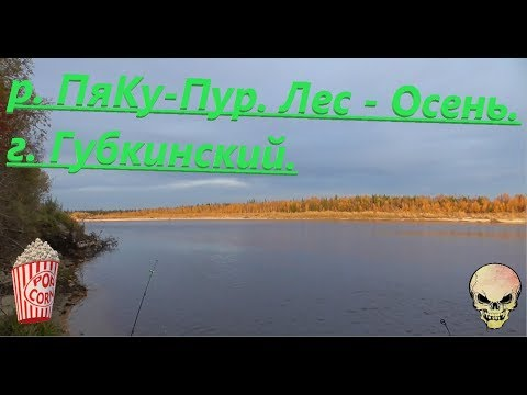 Вылазка на рыбалку. г. Губкинский, река Пяку-Пур. Ловим Язя. Красоты ЯМАЛа.