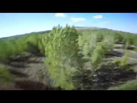 Enregistrement Drone Dgac, Tout Drone pas cher