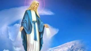 Nụ Hồng Dâng Mẹ Maria