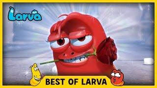 LARVA BEST OF LARVA | Funny Cartoons for Kids | Cartoons For Children | LARVA Official WEEK 11 2017