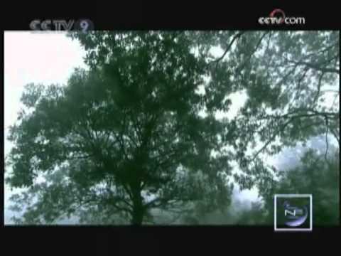Wudang Mountain - Cradle of Taoism E04 Part 1/2