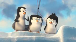 Tučňáci z Madagaskaru - exkluziv...