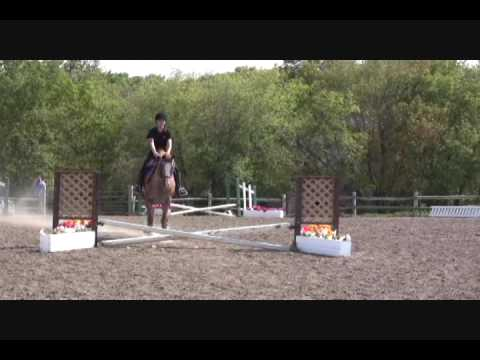 Nikki & Jersey – North Run Farm – Cross-rails