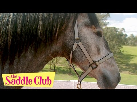 The Saddle Club - Horse of a Different Color Part I and Part 2 | Saddle Club Season 2 | Full Episode