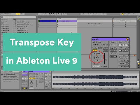 Transposing The Key In Ableton Live