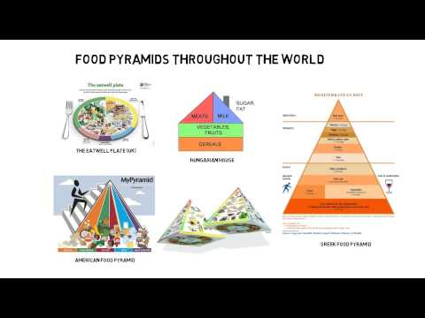 From food to nutrients