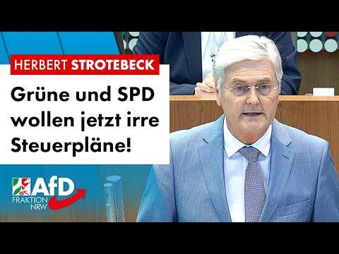 Grüne und SPD wollen jetzt irre Steuerpläne! – Herbert Strotebeck (AfD)