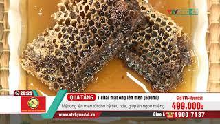 [VTV-HYUNDAI]VÕ KIỆT-Combo 2 chai mật ong NC(500ml/chai)+1chai mật ong+2 hũ viên nghệ