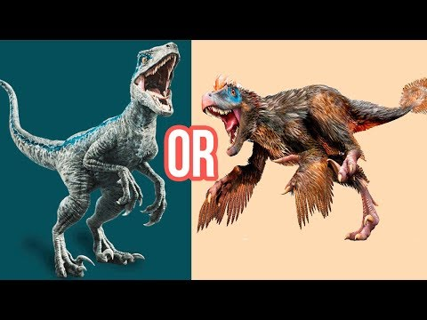 Velociraptor Pictures & Facts - The Dinosaur Database