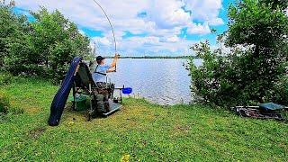 Фидерная рыбалка в день рыбака Трофейный лещ