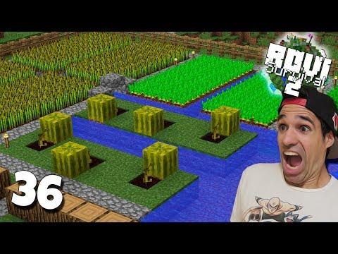 ¡¡ COMIDA INFINITA EN MINECRAFT !! | Rovi Survival Minecraft 2 | Episodio 36