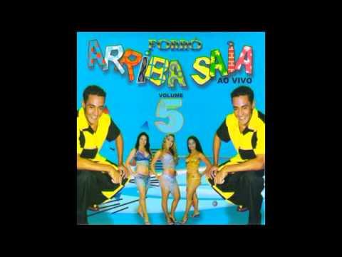 cd forro arriba saia vol 5