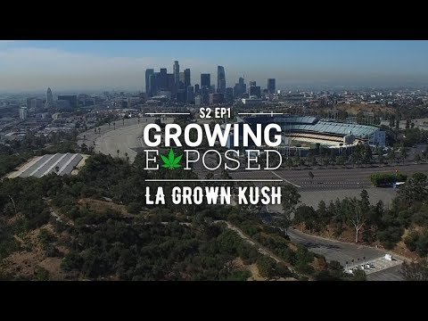 Growing Exposed Season 2 Episode 1: LA Grown Kush