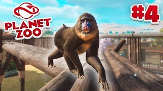 NEW PRIMATES! - Planet Zoo #4 w/ Vikkstar