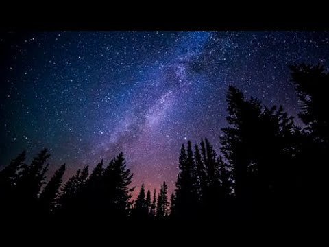 Relaxation. The Night Sky