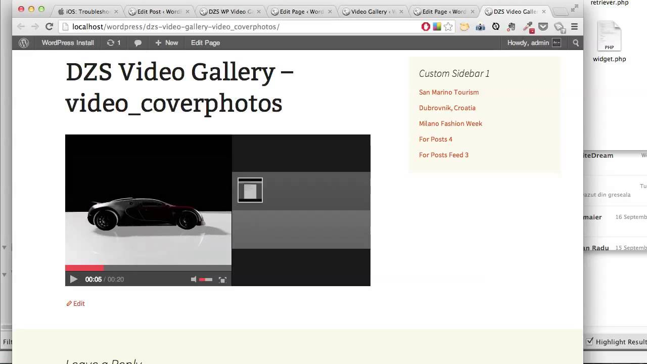 CodeCanyon, DZS Video Gallery WordPress - How to setup multiple ...