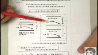 2-3 質量分析(Mass Spectrometry) : 質量分析法の原理とスペクトル